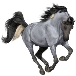 ★Cᴇᴘʜᴇᴜs★ 4154.10, Riding Horse Hanoverian Roan - Howrse