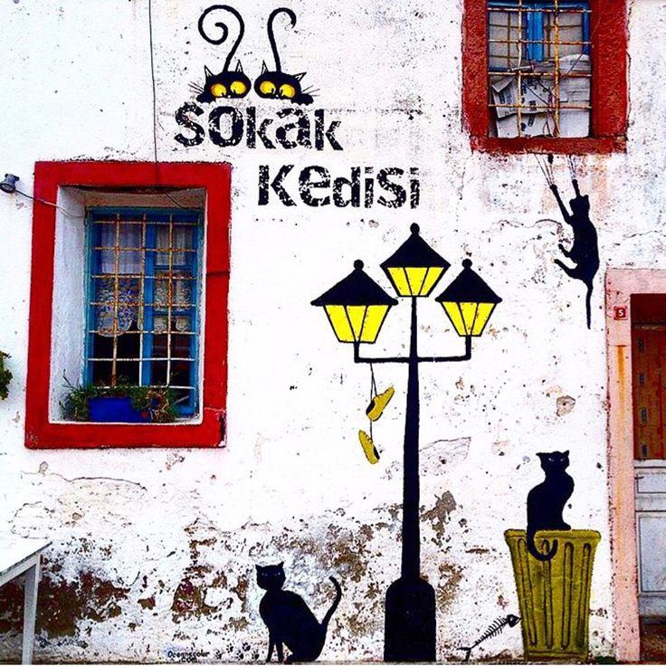 Güzel insanlar gittikleri yerleri güzelleştirir. Cunda Adası'na her geldiğinizde yeniden aşık olacaksınız❤️ Cunda Island, Ayvalık in Turkiye. Photo ayça dln www.kucukoteller.com.tr/cunda-adasi-otelleri.html?utm_content=buffer9ddc7&utm_medium=social&utm_source=pinterest.com&utm_campaign=buffer www.boutiquesmallhotels.com?utm_content=bufferdd386&utm_medium=social&utm_source=pinterest.com&utm_campaign=buffer