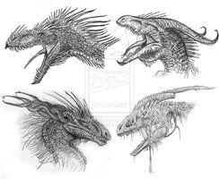 39 best how to draw dragons furries images on pinterest how to draw dragon heads ccuart Choice Image