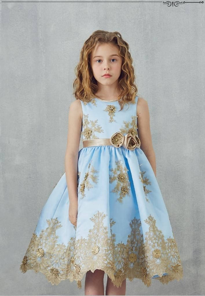ad42f02e0b0 Buy GIRLY SHOP Elegant Gold Embroidery Flower Applique Round Neckline  Sleeveless Knee - Tea Length Infant Toddler Little   Big Girl Party Dress  With Cute ...