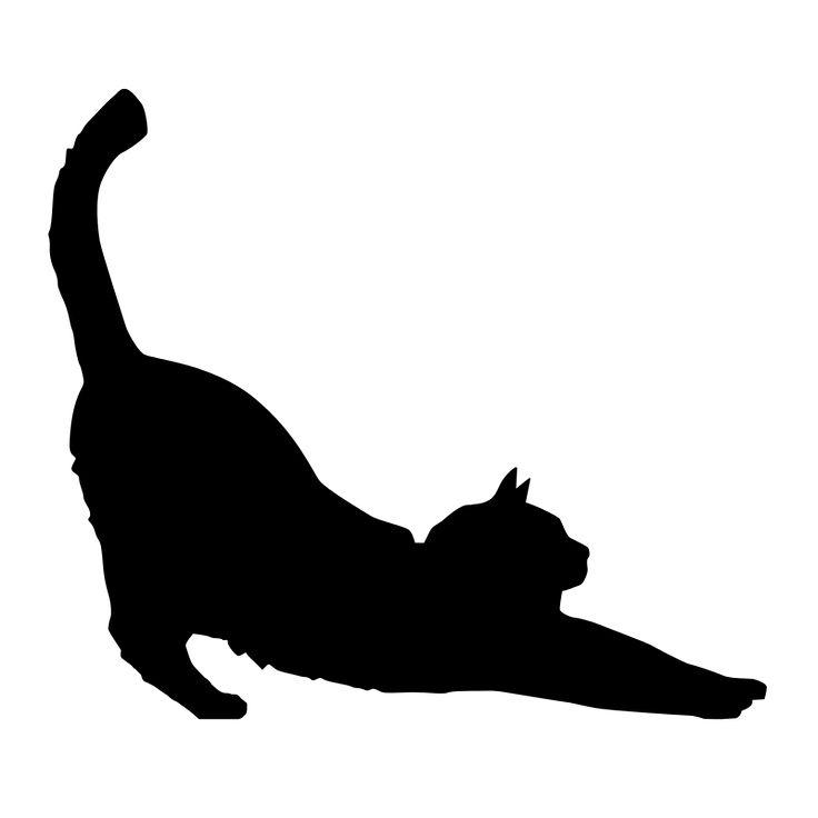 Тень кошки картинки