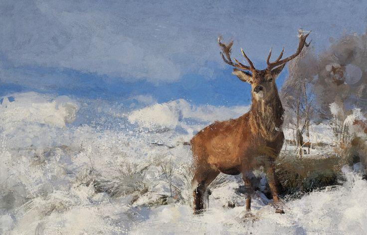 Winter Landscape by PhotoDonut  #painting #artwork #photodonut