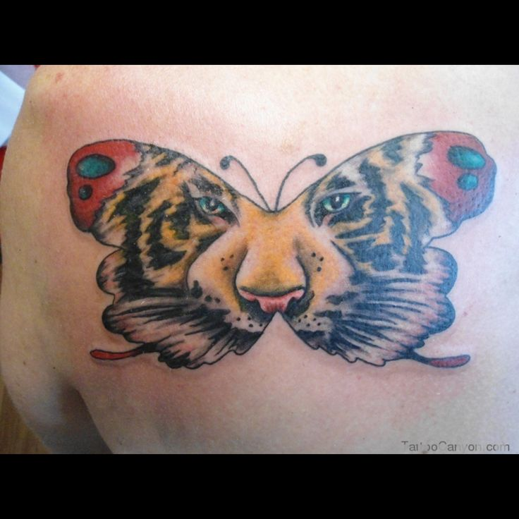 25 best leo face butterfly tattoo images on pinterest butterfly tattoos ink and tatoos. Black Bedroom Furniture Sets. Home Design Ideas