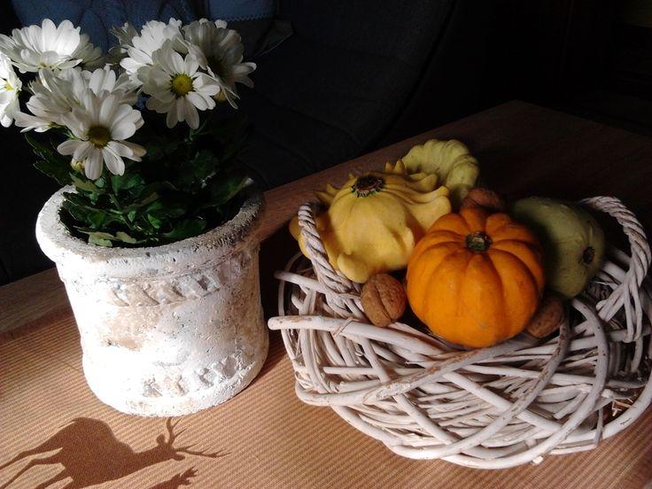 Wyposażenie, Jesienne klimaty... - I nowych kwiatów...