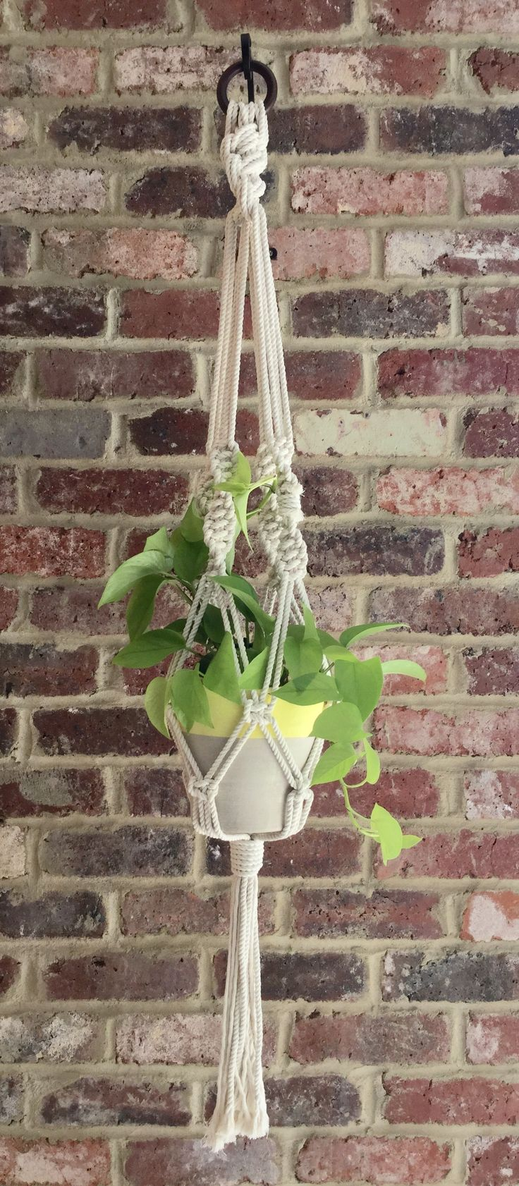 Macrame Plant Hanger 6mm Natural cotton twisted rope