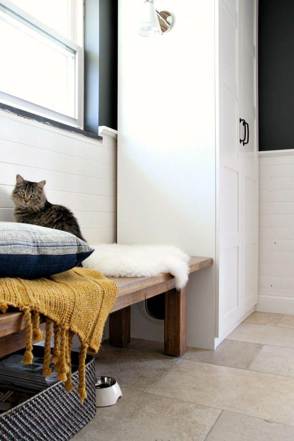 Best 25+ Hidden Litter Boxes Ideas Only On Pinterest | Litter Box, Cat Boxes  And Cat Litter Boxes