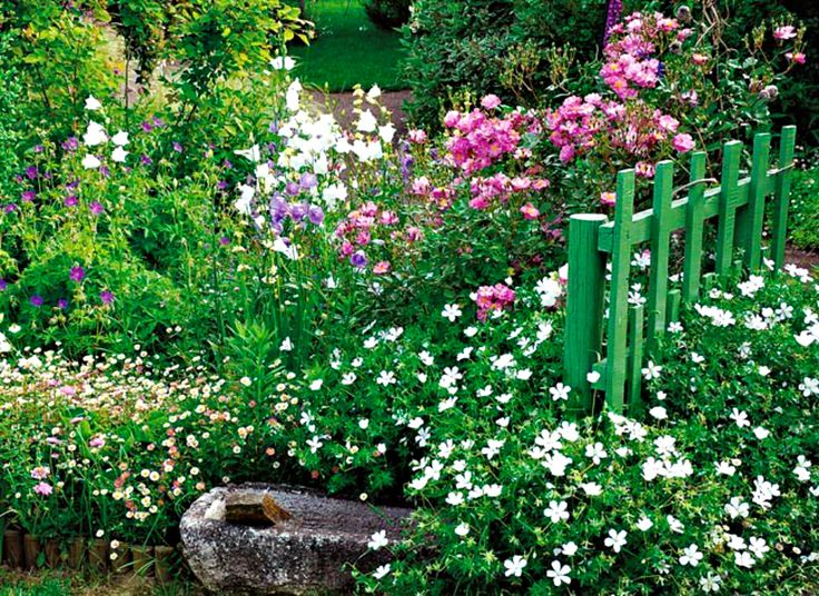 Little Cottage Garden Gardens Pinterest Gardens