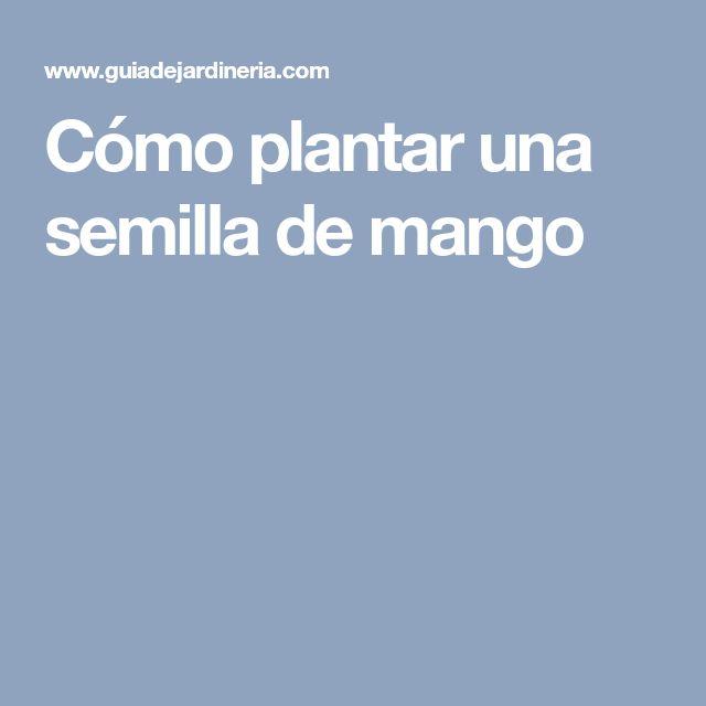 Cómo plantar una semilla de mango