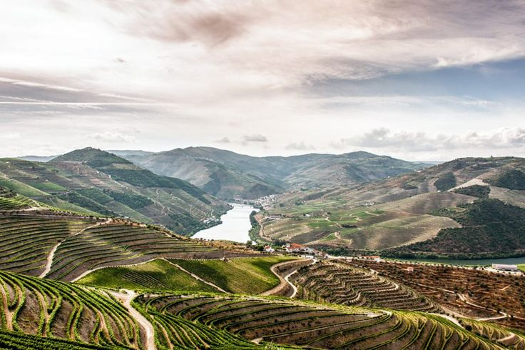 The Douro Valley, Home of fine Port Wine | The 19 Best Places to Visit in Portugal