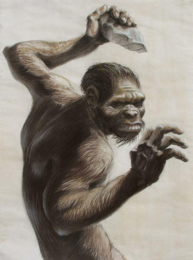 Homo habilis - reconstruction by Florentin Onofrei