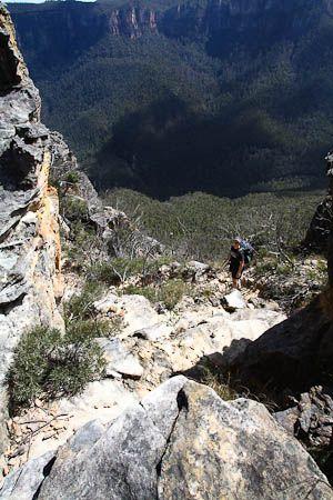 Blue Gum Forest via Du Faur Head - Bushwalking NSW