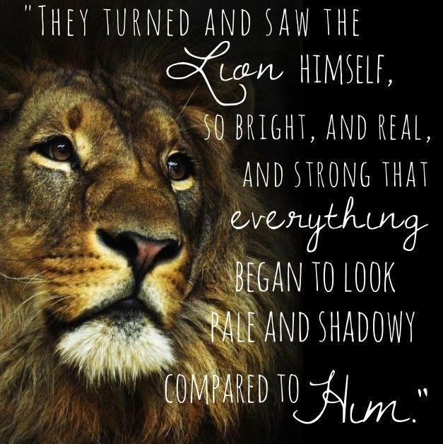 The author also helps readers understand how Lewis's Aslan represents Jesus Chri…