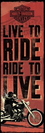 Live to Ride...