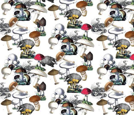 Badger Badger Mushroom fabric by annacole on Spoonflower - custom fabric