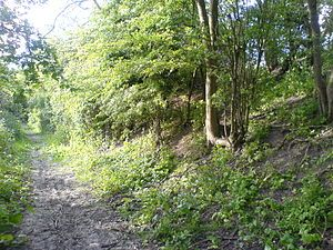Bran Ditch - Wikipedia, the free encyclopedia Also known as Heydon Ditch. Ancient burials and hauntings