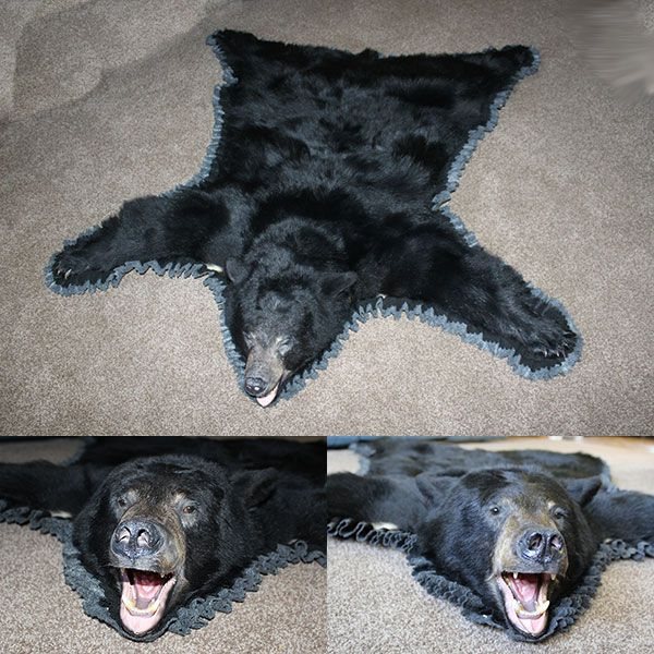 Black Bear Skin Rugs for Sale | Brown Bear Rug : Bills Bear Rugs and Taxidermy