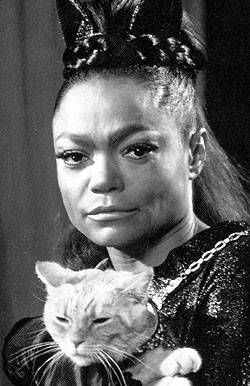 """During the Lyndon Johnson administration, Eartha Kitt made her feelings well known on the Vietnam War while at a luncheon in the White House, stating """"You send the best of the country off to be shot and maimed. No wonder the kids rebel and take pot.""""  After which she was basically banned from performing in the United States so she had to travel overseas for work. Eartha did not return to the States until 1974 with a concert in Carnegie Hall."""