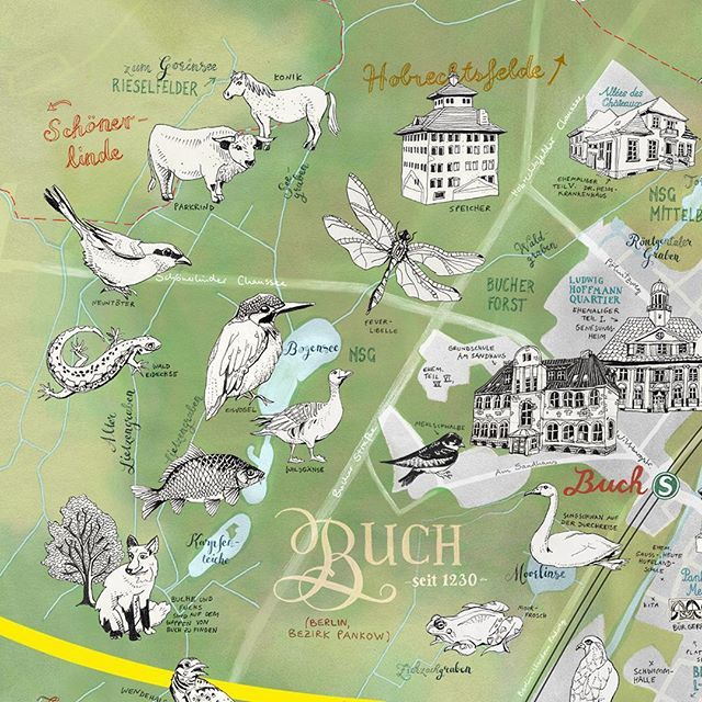 Map of Berlin-Buch by Theresa Grieben. This is a close up of my illustrated map of Berlin-Buch, a perfect destination for a bike ride to nature. There's a couple of little lakes to discover, some rare bird species and even some wild cattle and wild horses as you get further up the fields. Love my home! ⠀  ⠀  PS: This map is also available in my Online Shop www.theresagrieben.etsy.com .⠀