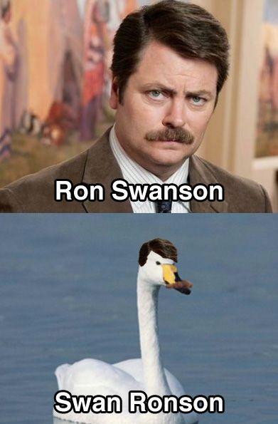 Ron Swan-son