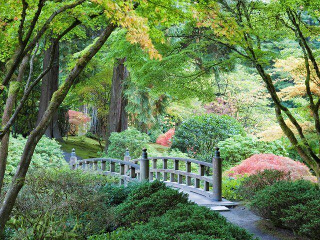 108 best flowers gardens images on pinterest free - Portland japanese garden free day ...