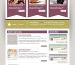 Creative Burst Wordpress Theme $45