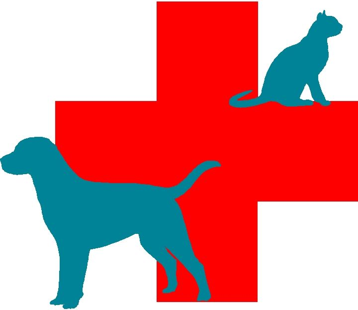 17 best images about vet symbols on pinterest medicine  icons and pet id tags Pink Dog Clip Art Blue Dog Collar Clip Art