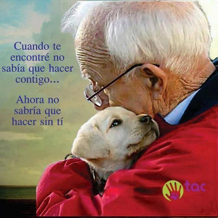 Esto es realmente hermoso, amor a los animales <3