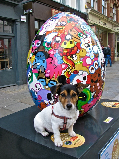 (This is not my dog but is the same breed) I want the dog and I guess the Moshi Monsters egg as well