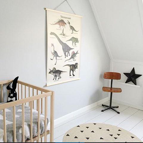 17 Beste Ideeën Over Dinosaurus Slaapkamer Op Pinterest Jongens ...