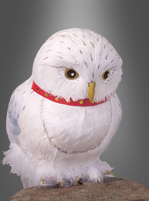 Eule Harry Potter Hedwig Dekoration Bei Kostumpalast Harry Potter Bird Potter