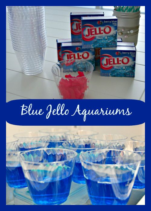 Blue Jello Aquariums