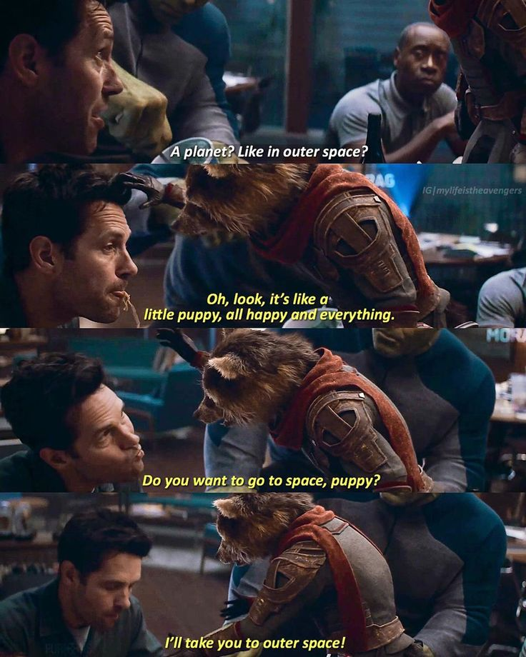 I mean, he's not wrong. Scott is a puppy. ❤️ #AvengersEndgame#Avengers#Ant… – ZERO TK