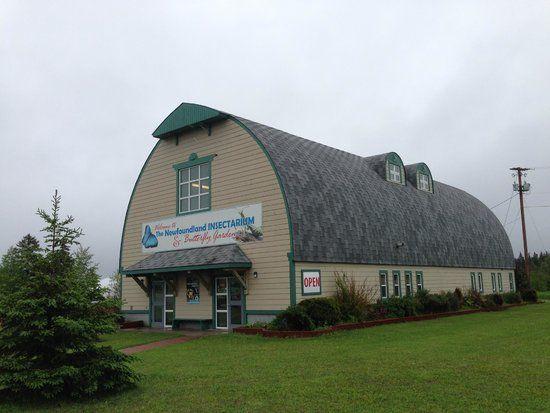 Newfoundland Insectarium, Deer Lake: See 181 reviews, articles, and 142 photos of Newfoundland Insectarium, ranked No.1 on TripAdvisor among 6 attractions in Deer Lake.