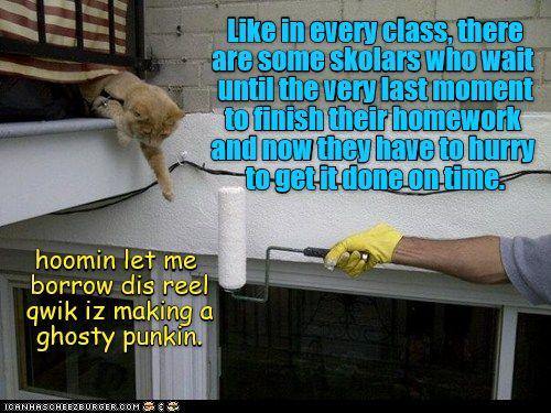 KKPS: Paint Ur Pumpkin #humor #funny