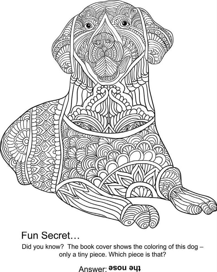 230 Best Images About Coloriage Mandala Chien On Pinterest