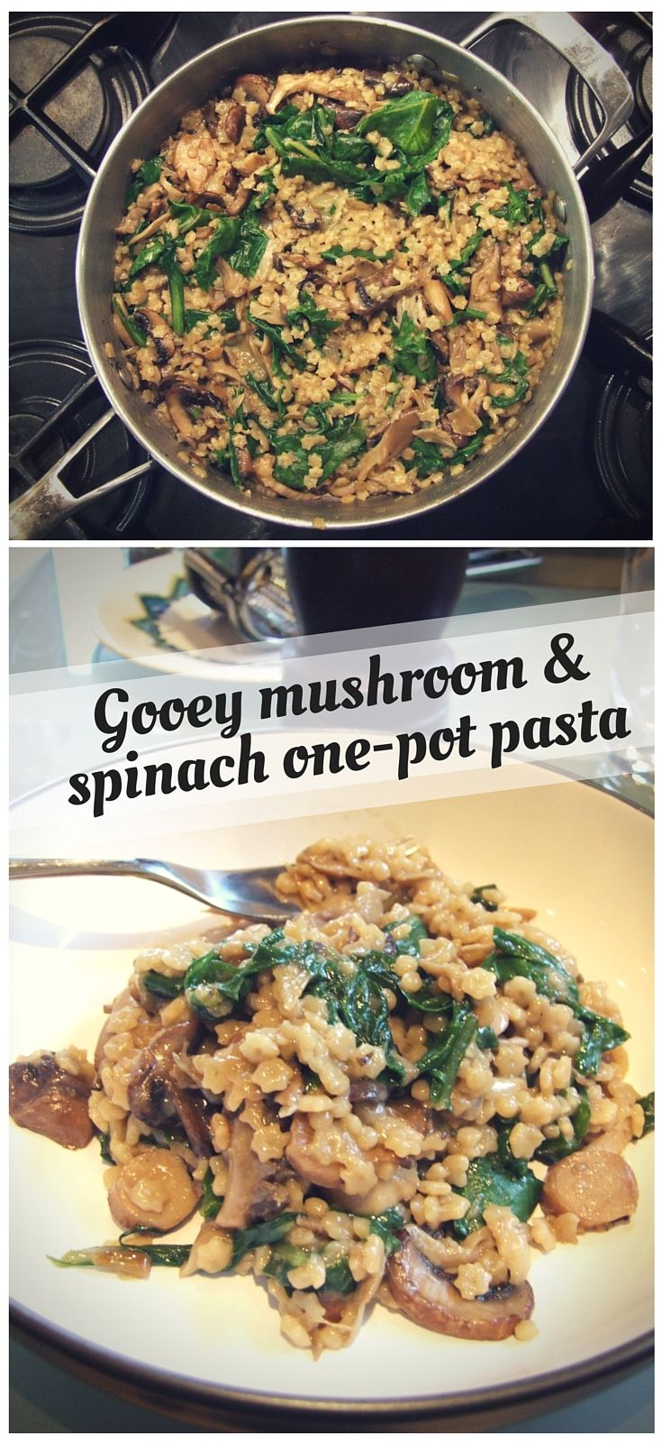 gooey wild mushroom & spinach one-pot pasta
