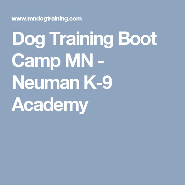 Dog Training Boot Camp MN - Neuman K-9 Academy