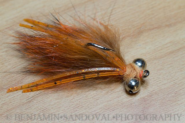 Foxy Brown Carp fly | Flickr - Photo Sharing!