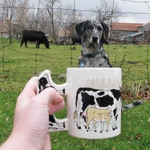 In order to catch the cow, one must become the cow… | 21 Mutts Muggin'