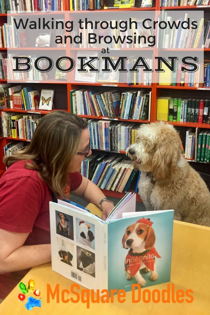 Walking Through Crowds Browsing At Bookmans Dog Friends Dogs