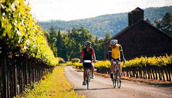Cycling around winecountry: Five valleys of world-famous vineyards. Forests of soaring redwoods, quiet pastoral landscapes and the dramatic Pacific Coast. They could be five separate adventures, but they're not. This is Northern California.