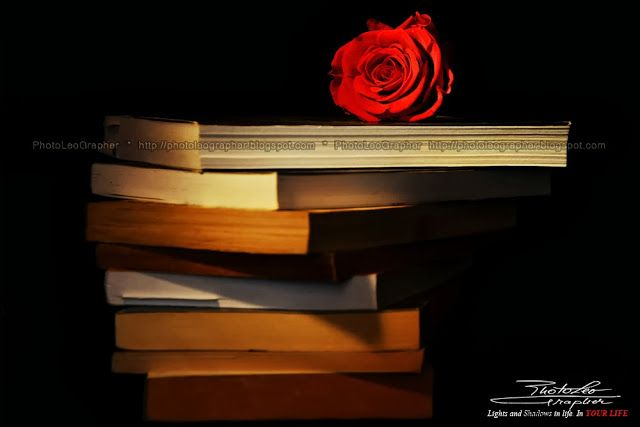 The Beauty and the Book: Beauty comes from within!  by PhotoLeoGrapher