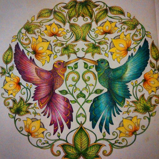 307 Best Images About Secret Garden Coloring Book Pictures
