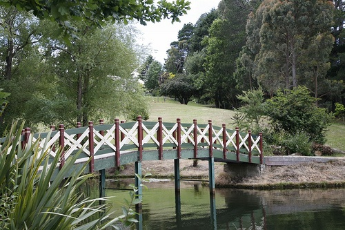 Beautiful image of the bridge at Lake Daylesford