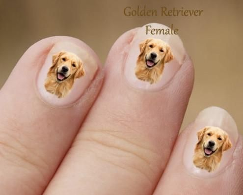These unique golden retriever stickers are great for natural or false nails. There are 24 stickers included in your order. They come in different sizes since your fingers are different dimensions..