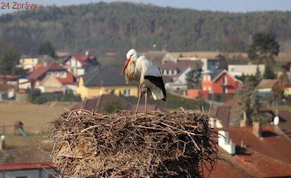 Mraky pustí do Česka slunce, příští týden bude 15 °C
