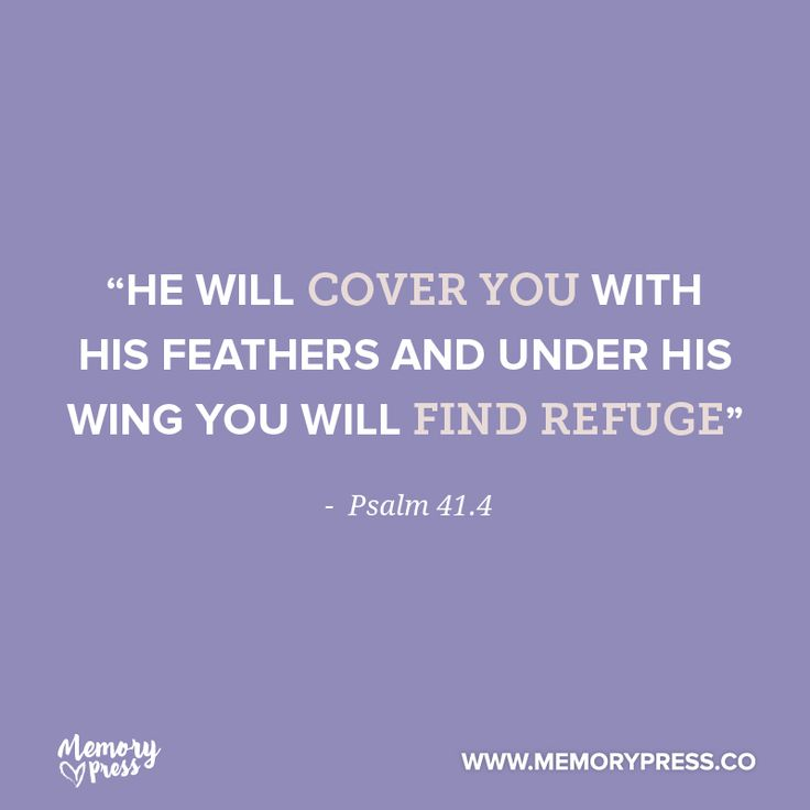 """""""He will cover you with his feathers and under his wing you will find refuge"""" - Psalm 41.4. A collection of short funeral quotes to guide us through grief - by Memory Press, creators of beautiful, uplifting and memorable funeral programs."""