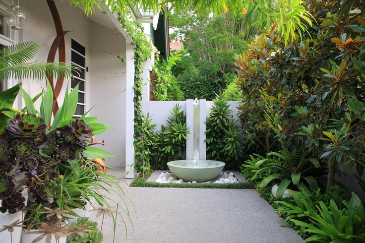 Water Feature White Pots Pebbles Bromeliads Tree Bush Behind All Succulents In Pots In Near