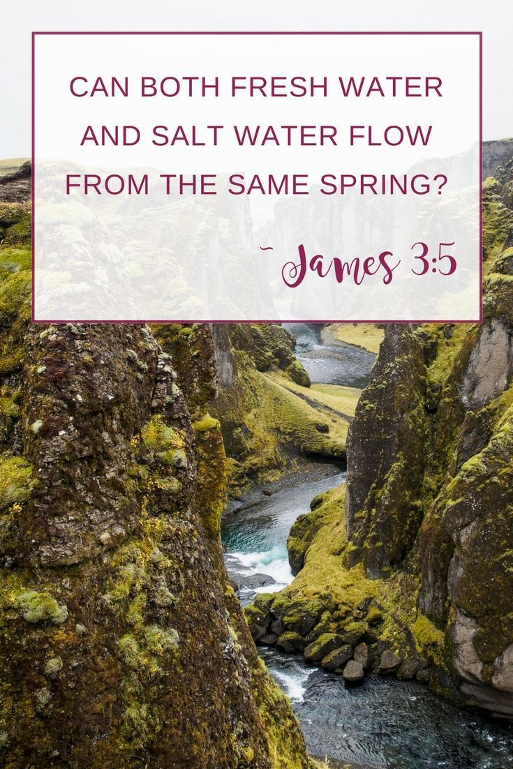 Learn how to study epistles effectively while digging deep into the Book of James verse by verse. It's one of the most practical and application-focused books of the Bible. | Scripture Confident Living