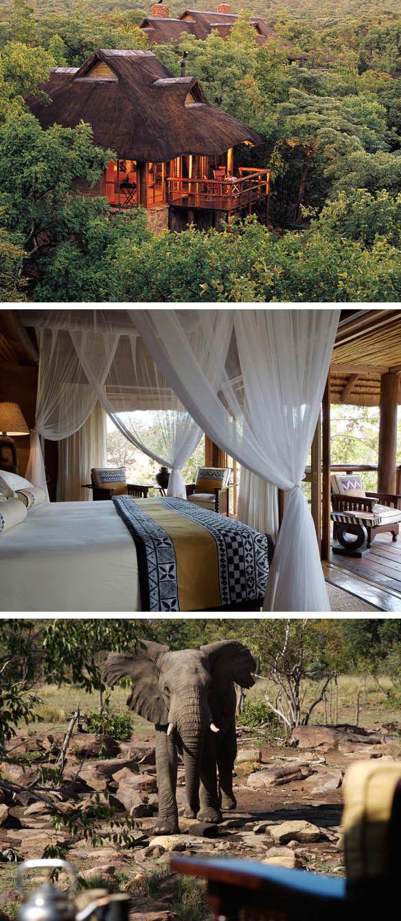 Makweti Lodge, South Africa  http://www.makweti.com/home.html